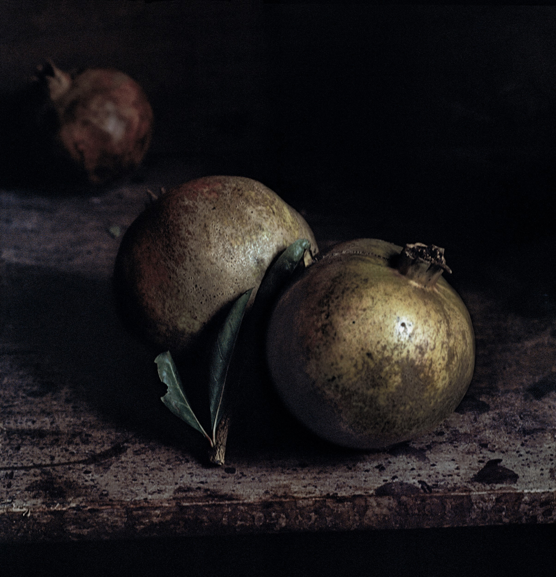 Craigie Horsfield Two pomegranates, Via Chiatamone, Naples. November 2009 2013. Courtesy der Künstler und Large Glass, London