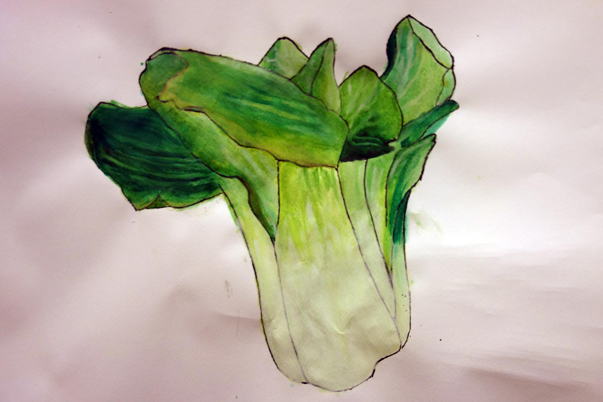 Scientific visualization: strange vegetable, year 9 and 10
