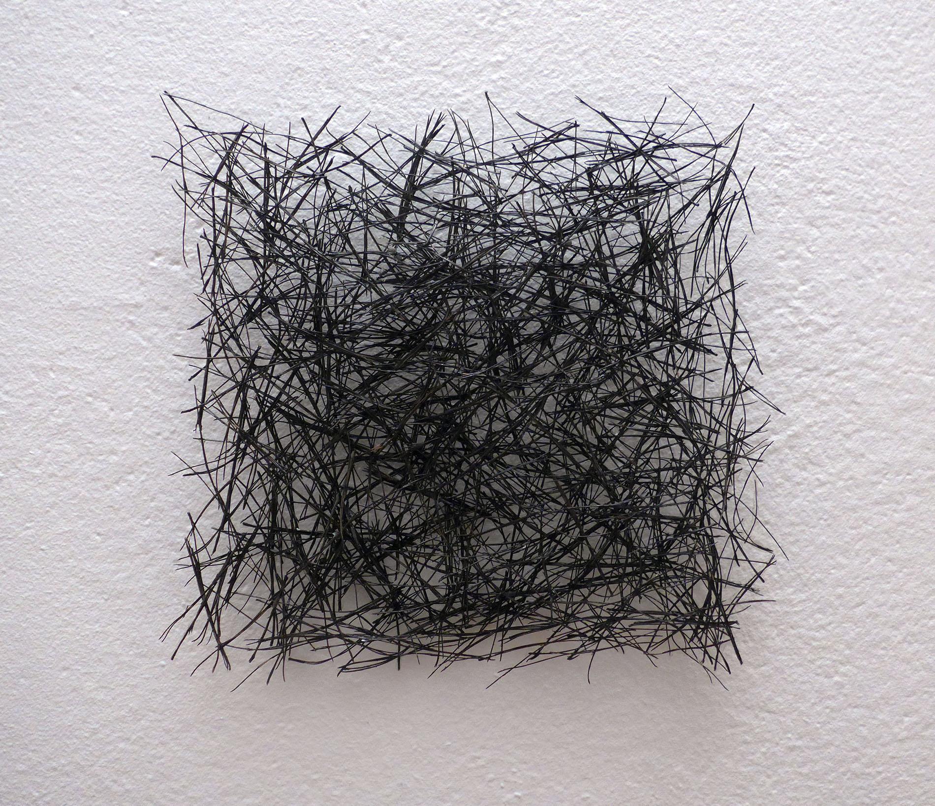 Isa Barbier, carré noir, 1998, Piniennadeln aus Aleppo, Harz und Acryl